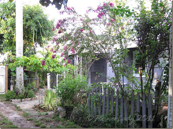 08-01-shed-gard2