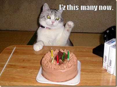 BirthdayCat