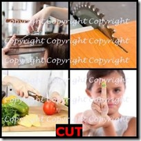 CUT- 4 Pics 1 Word Answers 3 Letters