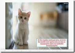Τι ξέρω για τα ζώα(1)