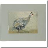 Bird Placemats
