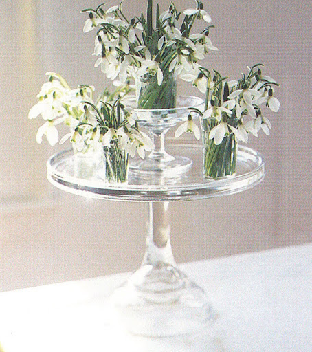 Place translucent-white snowdrops in antique juice glasses on a glass cake pedestal to take advantage of late-winter light. (The Best of Martha Stewart Living -- Arranging Flowers)