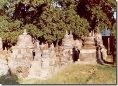SueReno_Mahabodhi Stupas 1