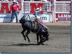 9442 Alberta Calgary - Calgary Stampede 100th Anniversary - Stampede Grandstand - Calgary Stampede Saddle Bronc Championship