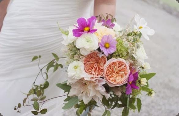 cosmos amanda taffinder flowers 1459940_238802439618046_1473197597_n