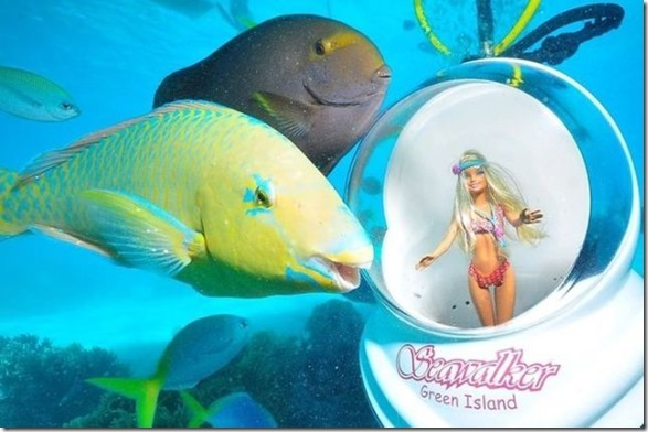 seawalker-photogenic-fish-3