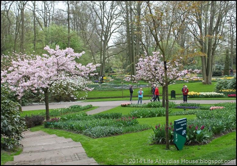 Keukenhof Gardens 25