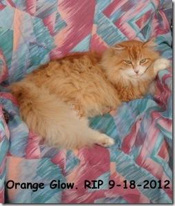 Orange-Glow-RIP.9.18.2012