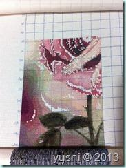 5 Rose 30-06-13