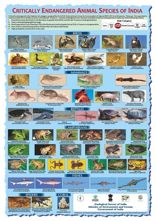 threatened species in india pdf