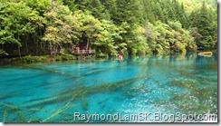 五花海1-九寨沟 Five Flower Lake 1-JiuZhai Valley National Park