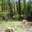 scigliano_live_59_20101009_1066869867.jpg