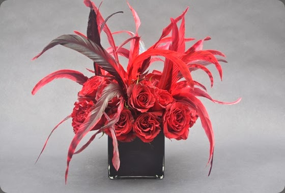 feathers medorange_tulipe_011  L'Oasis floral design