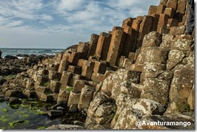 Giant Causeway - Irlanda do norte (1)