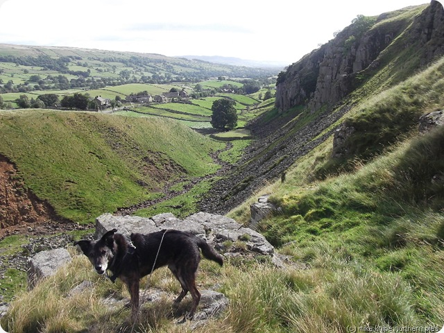 holwick scar and superdawg