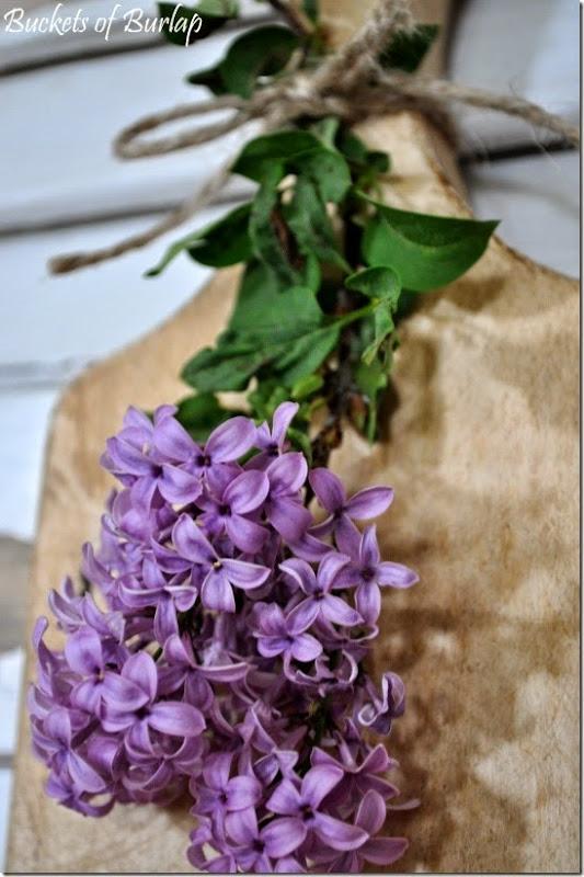 Lilacs 8