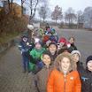 3a/b: Weihnachtsbaum Gohfeld 2014