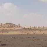Palmyre - vue du site (1).JPG