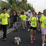 Pet Express Doggie Run 2012 Philippines. Jpg (106).JPG