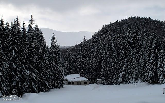 Valcan-Straja-Oslea_1584_rw.jpg