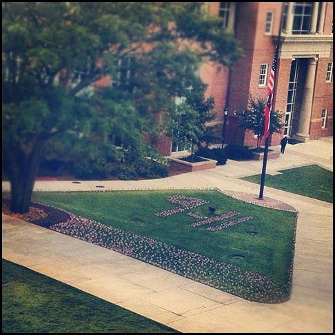Flags on the UGA campus in memory of those who lost their lives.
