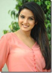 actress jasmine photo shoot at dillunnodu pm