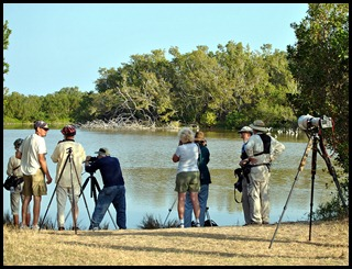 01e - Early Morning Eco Pond - Birders out in force
