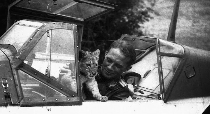 lieutenant-franz-von-werra-and-lion-cub
