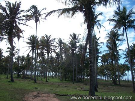 Curso São Gabriel Julho2011 038