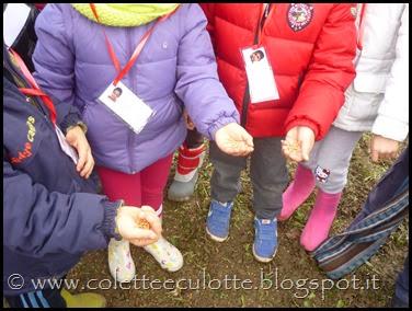 I bambini delle classi 1° della Scuola Primaria di Padulle piantano il grano! (20)