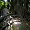 seychelles4_20070412_1138922751.jpg