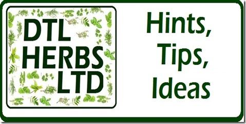 DTL Herb Hint Logo