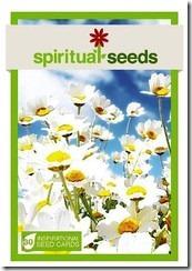 spiritual_seeds_medium
