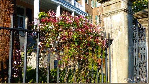Charleston_110