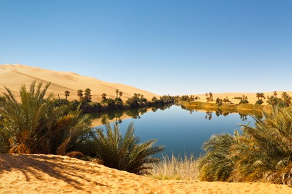 Umm al-Ma Lake - Desert Oasis, Sahara, Libya