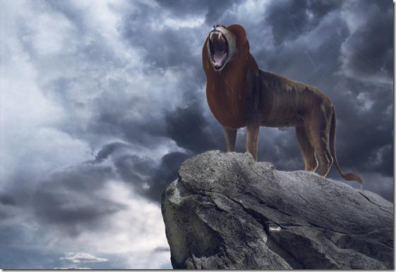 El Rey León,The Lion King,Simba (93)