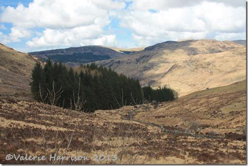 19-galloway-hills