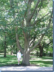 6455 Ottawa 1 Sussex Dr - Rideau Hall - Bill beside red oak planted by John F Kennedy