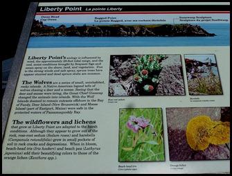 03b - Liberty Point
