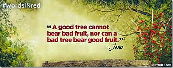 Good Tree- not both good & bad fruit