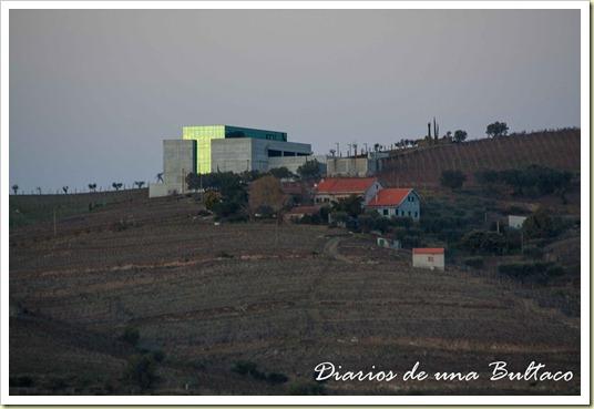 Douro-49