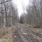 Дорога к тропе на плато Иремель.