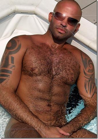 gay hairy13