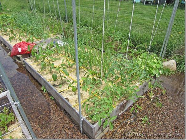 my_garden2