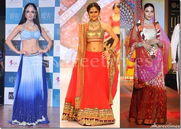 Bollywood_Sarees_2013(14)