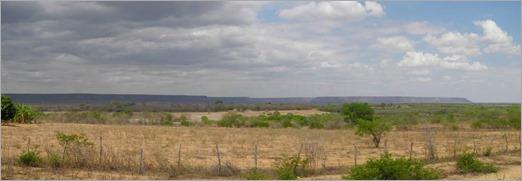 Dry Brazil