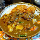 my absolute favorite Japanese curry with pork cutlet in Roppongi, Tokyo, Japan