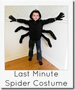 Last minute spider costume