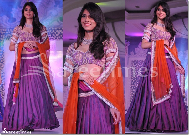 Neeta_Lulla_Embroidery_Saree_Blouse