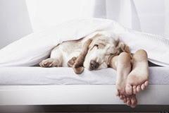 o-SLEEP-MISTAKES-facebook
